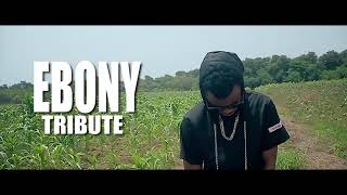 Xbaba Lewis - Ebony Tribute (Official Music Video)