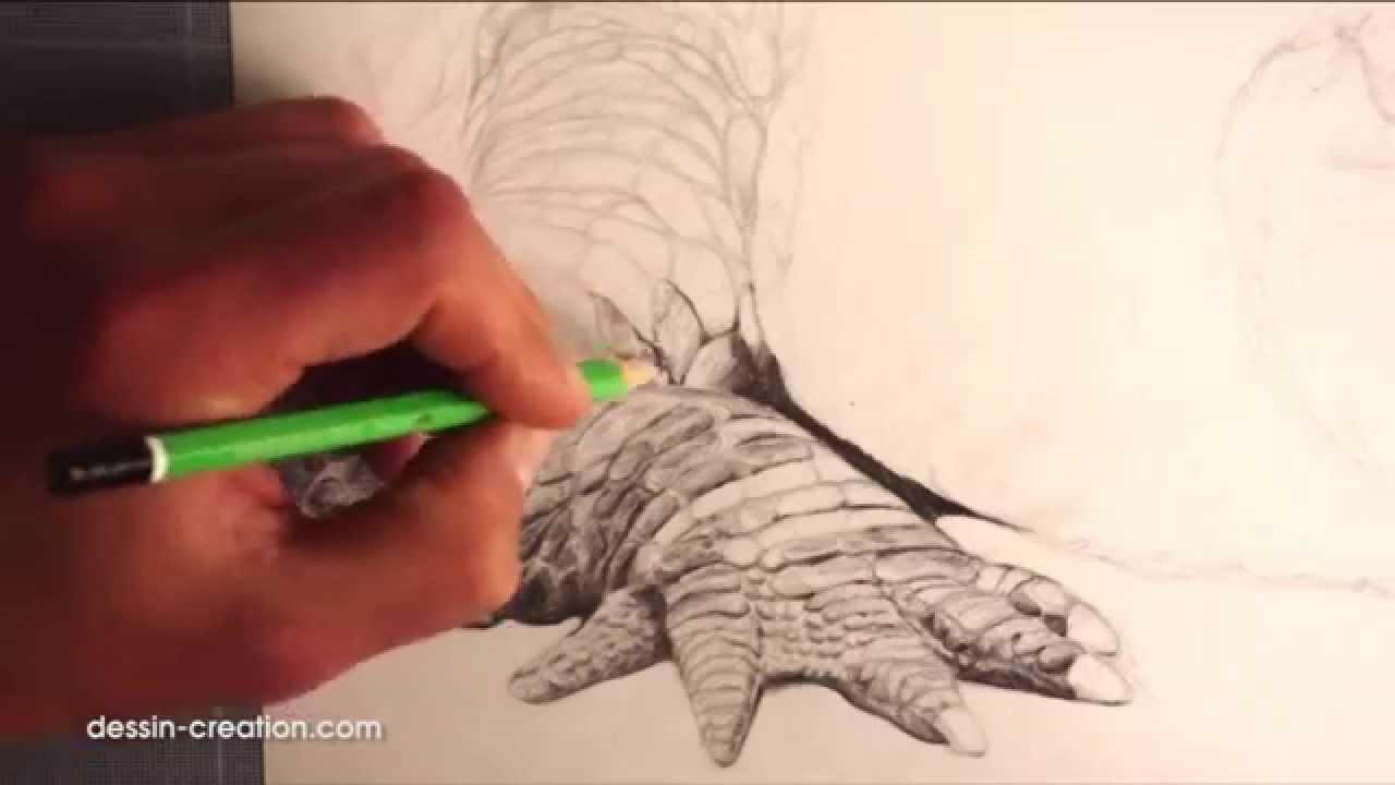 Dessiner les animaux - Comment dessiner un crocodile la ...