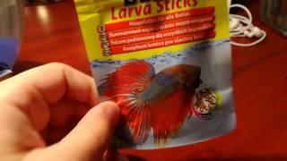 Уход за рыбкой петушок