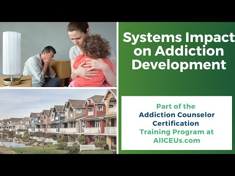 177  Systems Impact on Mood Disorders and Addictive Behaviors Live Addiction Counselor Certification