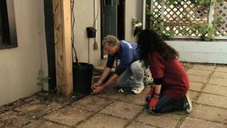 Vegetable Garden: How To Install A Drip Irrigation System Part 2