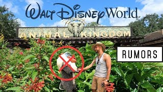 (Rumors) New Things Coming To Disney World! What's Confirmed & Whats's False!