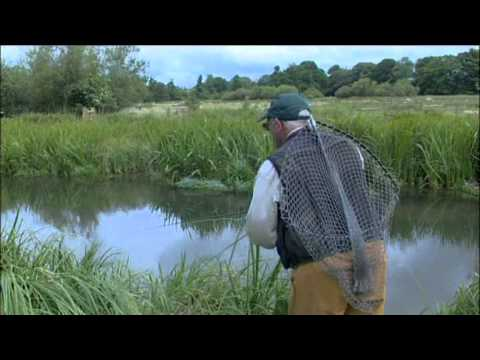 Born to Fish  Fly fishing The River Kennet