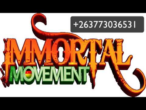 garry b & templeman immortal movement live on star fm zim