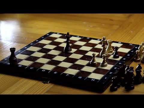 نظرة عامة عن لعبة الشطرنج - Chess game|  MTDMX