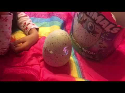 [Top 30 video Royaume Uni] Nasty Cussing Hatchimal !!