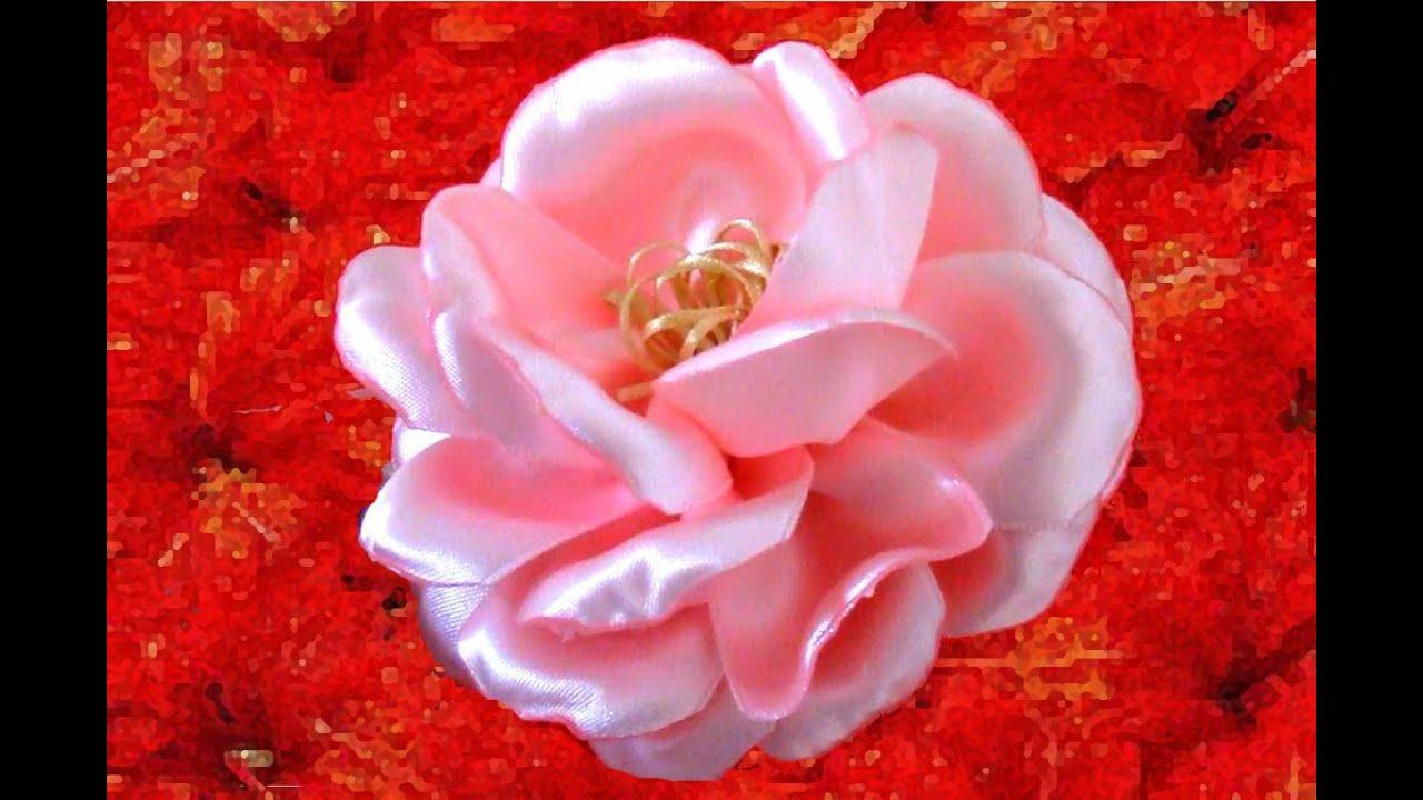 Rosas hermosas semis naturales en cintas youtube - Rosas rosas hermosas ...