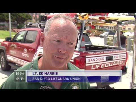 San Diego Lifeguard Union Leader Sues City Alleging Retaliation By Fire Chief