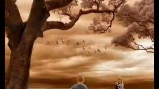 Evanescence ~ Forgive Me (sub. español)