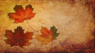 SPOOKY Waltz Music - Maple Leaf Waltz 🍁