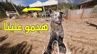 فار كراي 5 | مهمة انقاذ الكلب صديقنا!! Far Cry5