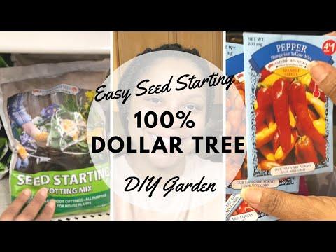100% Dollar Tree Vegetable Seed Starting | Budget Friendly | Gardening For Beginners