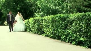 Профессиональая видеосъемка свадьбы в Москве: 292 видеооператора