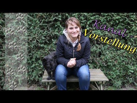 Abigail's Cairn Terrier - Vorstellung Hundekanal