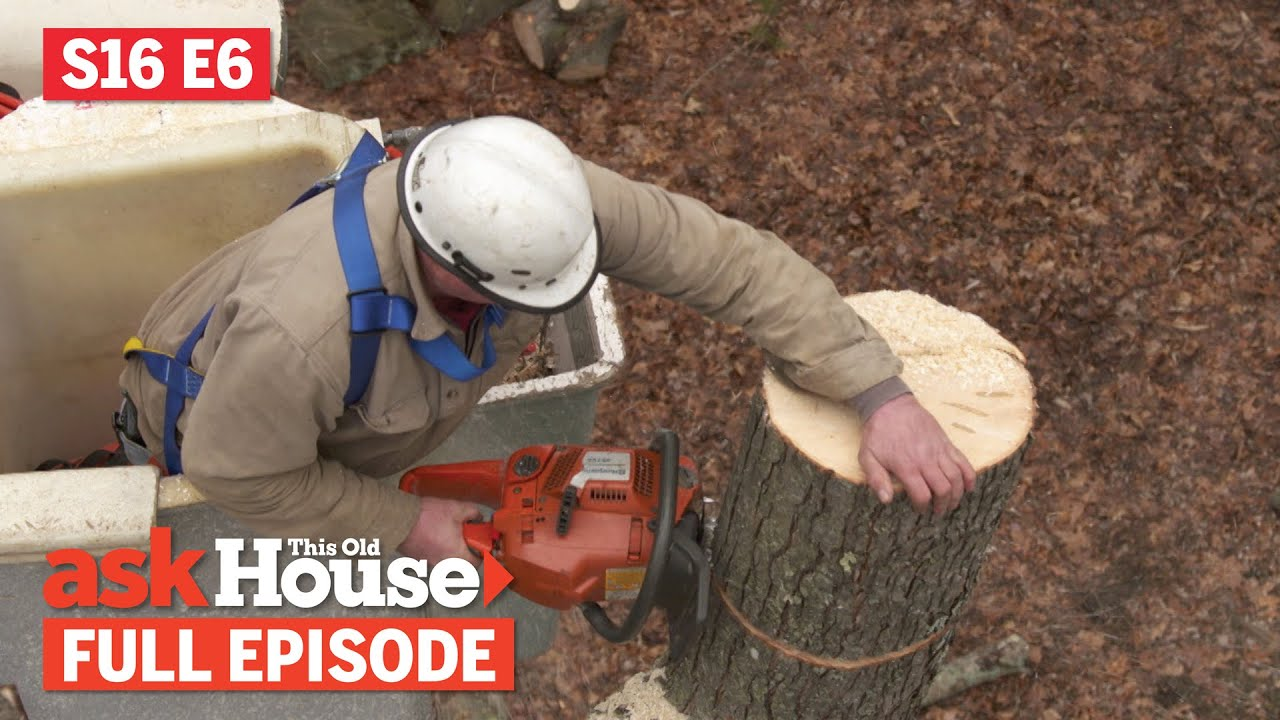 Ask This Old House   Tree Removal, Garage Door Opener (S16 E6)   FULL EPISODE