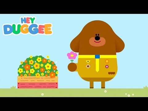 The Be Careful Badge - Hey Duggee Series 1 - Hey Duggee