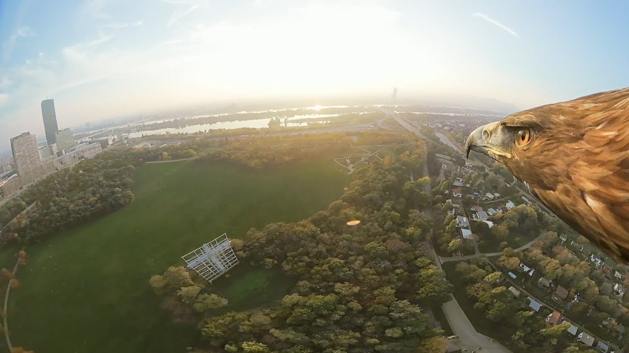 Vienna from an eagle's eye view - 360° (long)