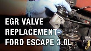 EGR Valve Replacement - Ford Escape 3.0L