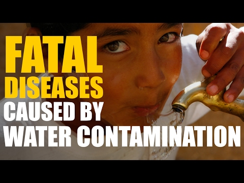 Fatal Diseases Caused by Water Contamination