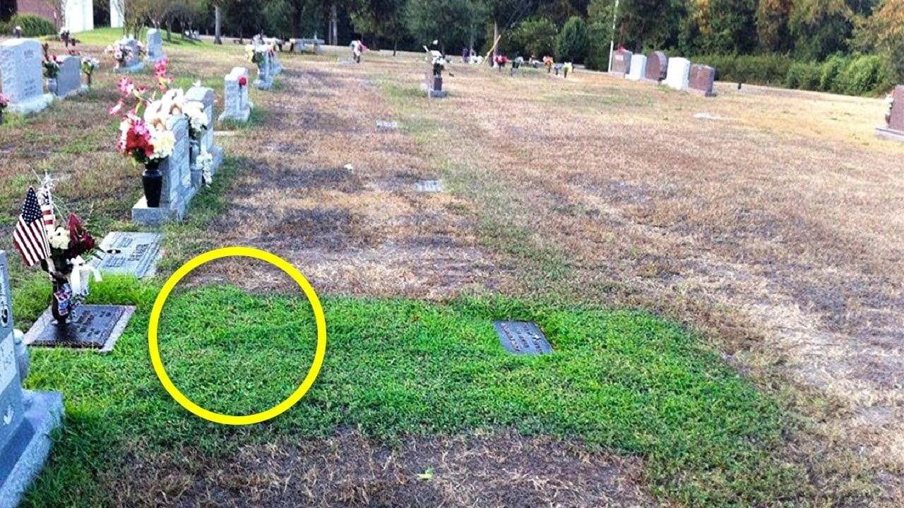 Download Mother Didn't Understand Why Her Son's Grave Was Green. She Cried When She Knew The Truth