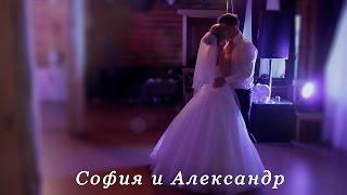 Ведущий Евгений Жариков. Свадьба Александра и Софии