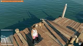 Смотри собаки 2