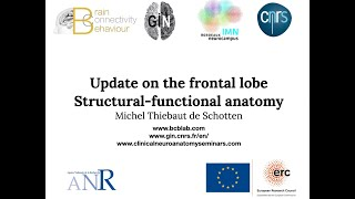 The Frontal Lobes - An Update on their structural and functional anatomy