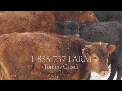 6/18/2016 U.S. Farm Report