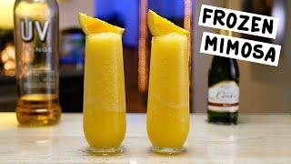Frozen Mimosa