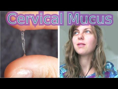 Cervical Mucus -  The Most Important Sign of Ovulation