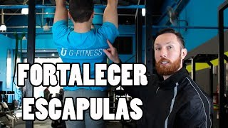 The Best Scapular Strength Exercises