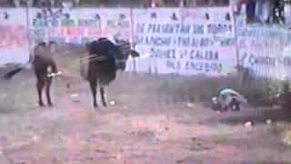 El Sireno de rancho El Bronco en Turitzio Michoacan