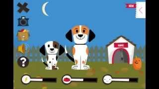 Dog with a Blog Care - Уход Собака точка ком