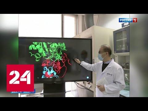 Создан микрожидкостный чип, выявляющий COVID-19 и другие вирусы - Россия 24