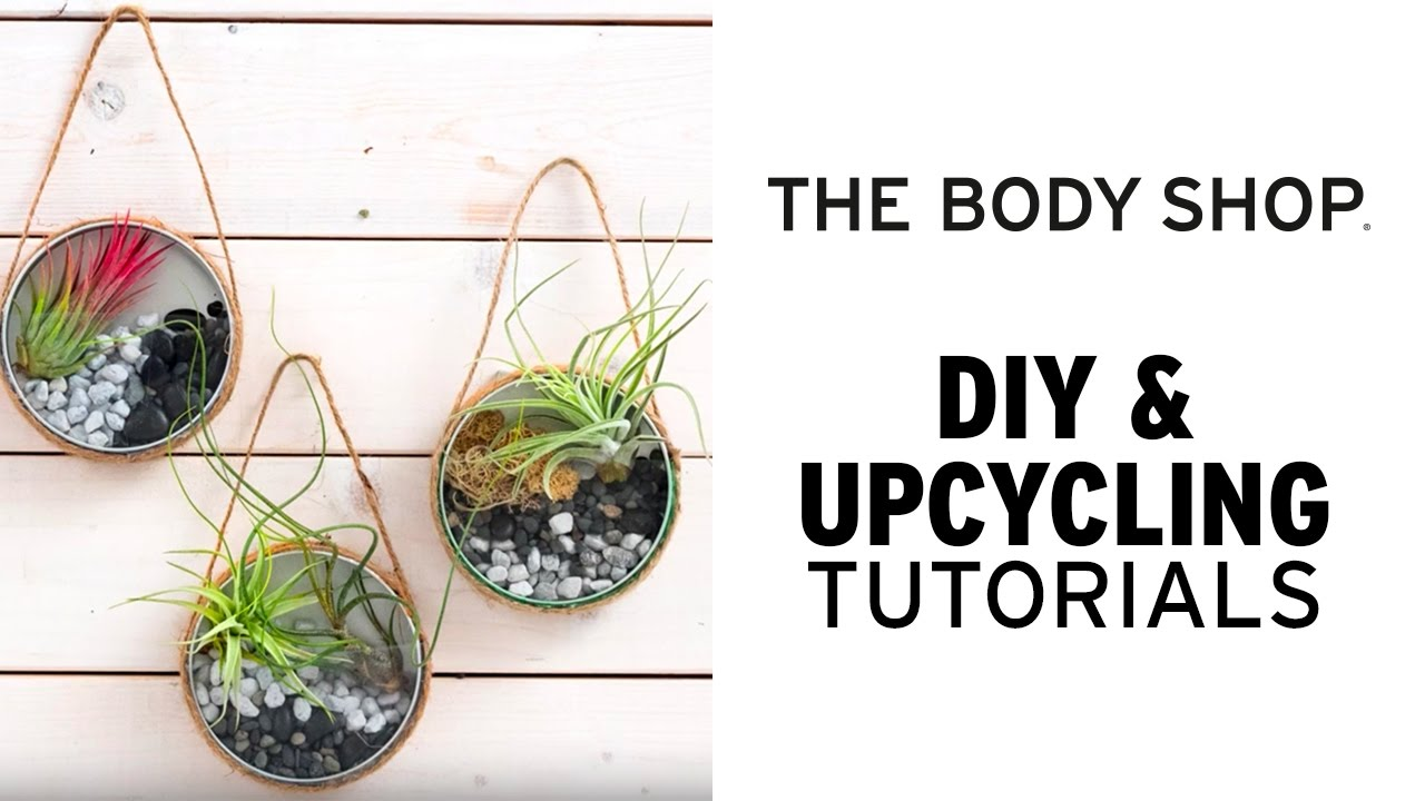 How To Make Your Own Upcycled Air Plant Terrarium The Body Shop
