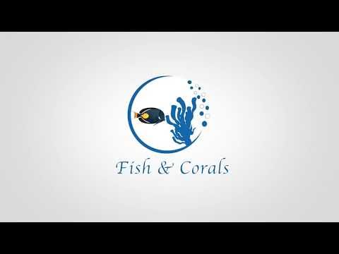 Fish&Corals - pesci marini