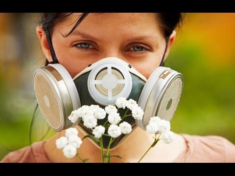 лечение пыльцевой аллергии народными средствами