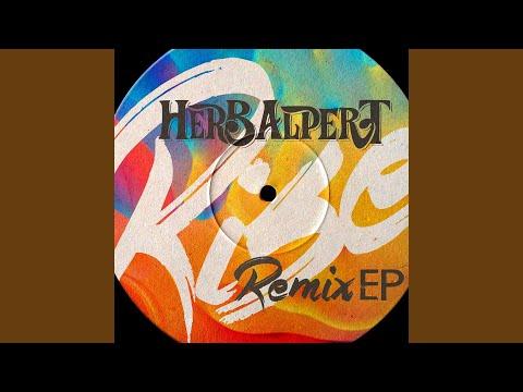 Rise (Soulshaker Club Mix)