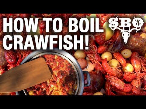 How To Boil Crawfish Youtube Watermelon Wallpaper Rainbow Find Free HD for Desktop [freshlhys.tk]