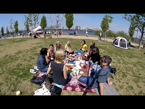 Picnic in Seoul | Han River Vegan Meetup (여의도 한강 피크닉)