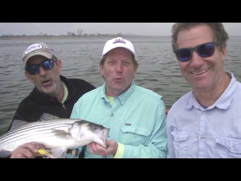 American Rivers Tour 2017 - Colin Ambrose on the Hudson River Jamaica Bay