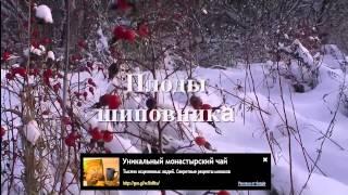 Купить монастырский чай из Белоруссии