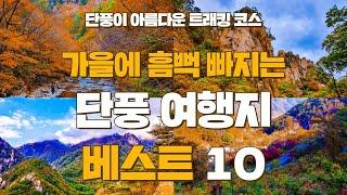 직접 다녀온 국내 가을 단풍 여행지 추천 BEST 10…
