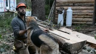Logs to Lumber: Cutting Bevel Boards