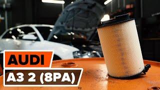 AUDI A3 Variklio oro filtras keitimas: instrukcija