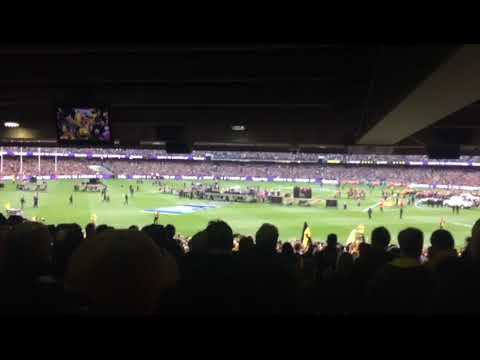 Richmond Tigers win the 2017 AFL Grand Final against the crows