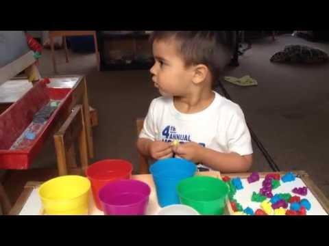 Montessori Inspired - The Color Bears