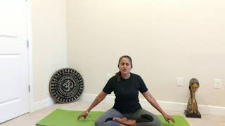 4.28.20 Therapeutic Yoga with Alpa