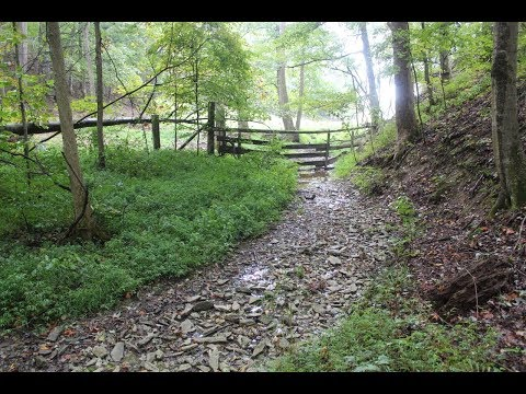 East TN Hunting Land | BR TR8B