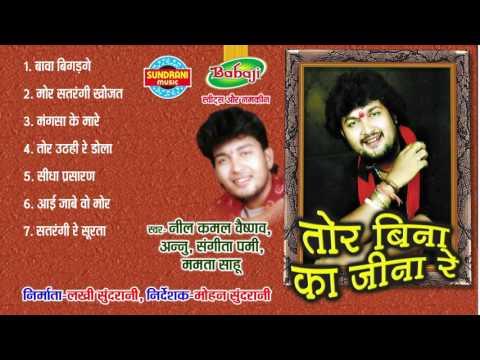 Tor Bina Ka Jeena Re - Chhattisgarhi Superhit Album - Jukebox - Singer Nilkamal Vaishnav, Mamta Sahu